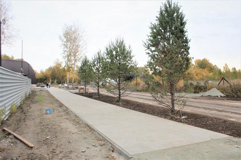 Высадили четыре дерева на пешеходной дорожке со стороны спортивного центра.